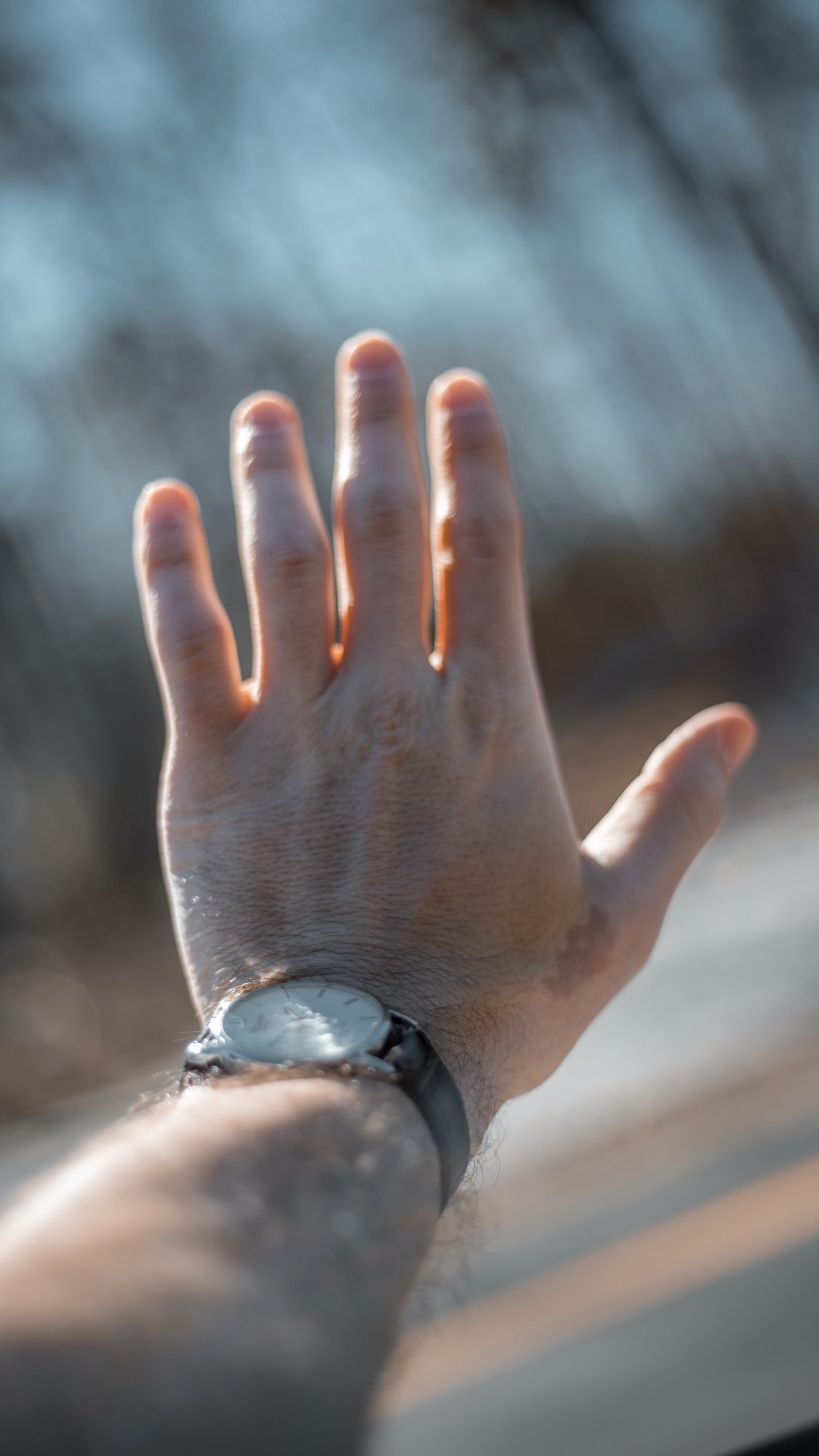 person holding silver-colored analog watch