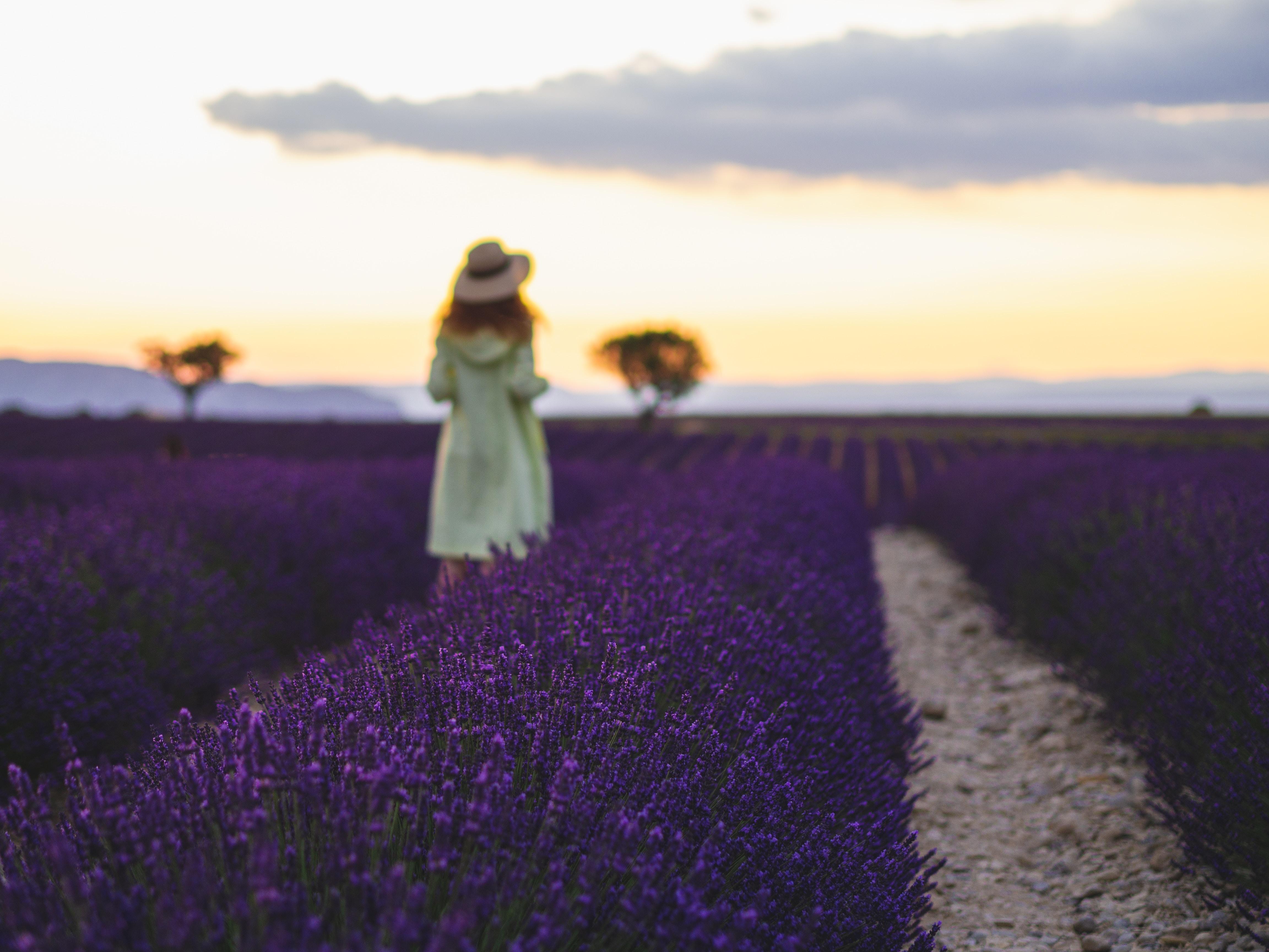 woman standing near flower field