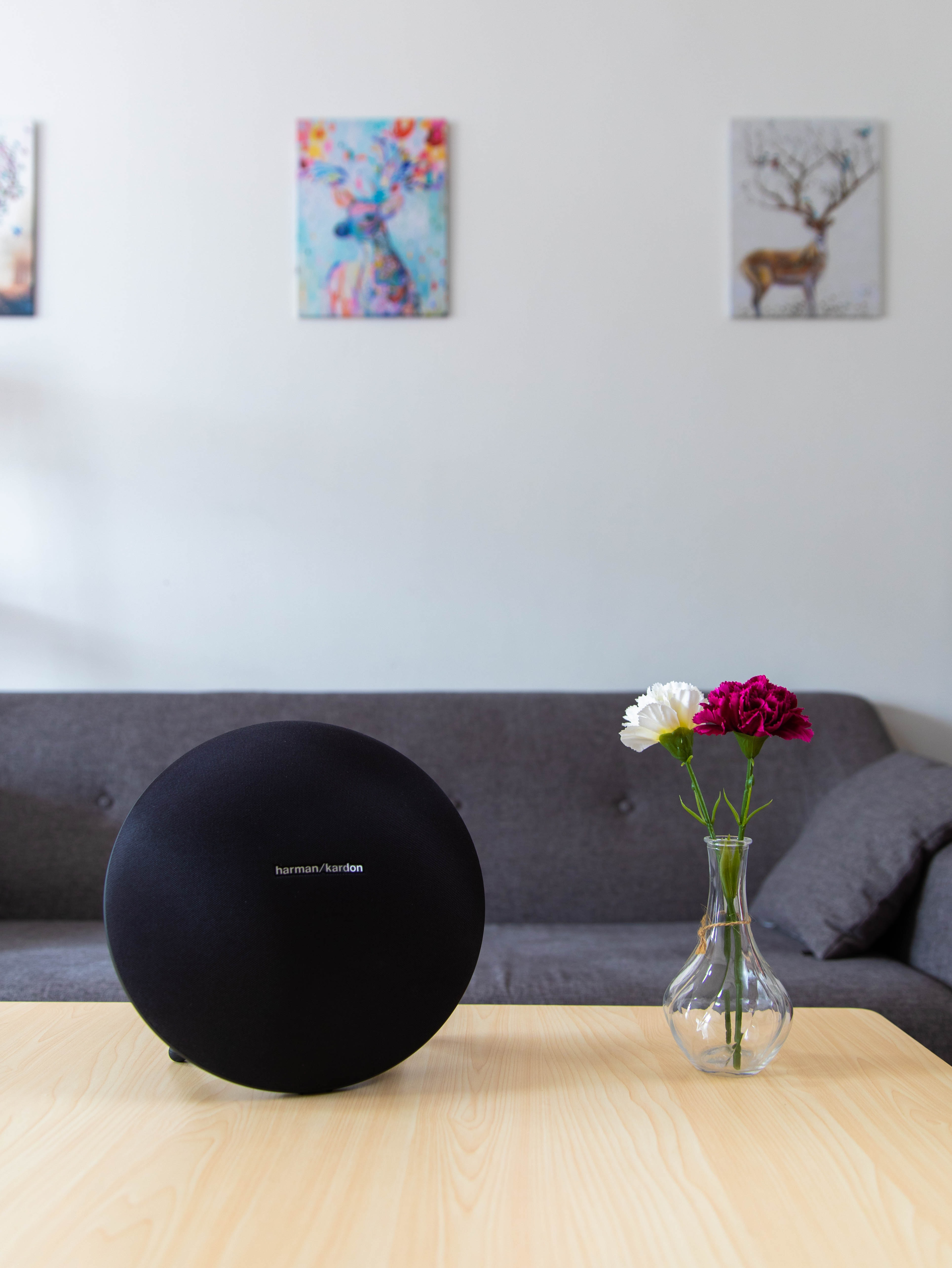 round black Harman/Kardon wireless speaker