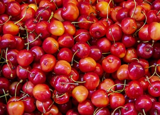 red berry lot