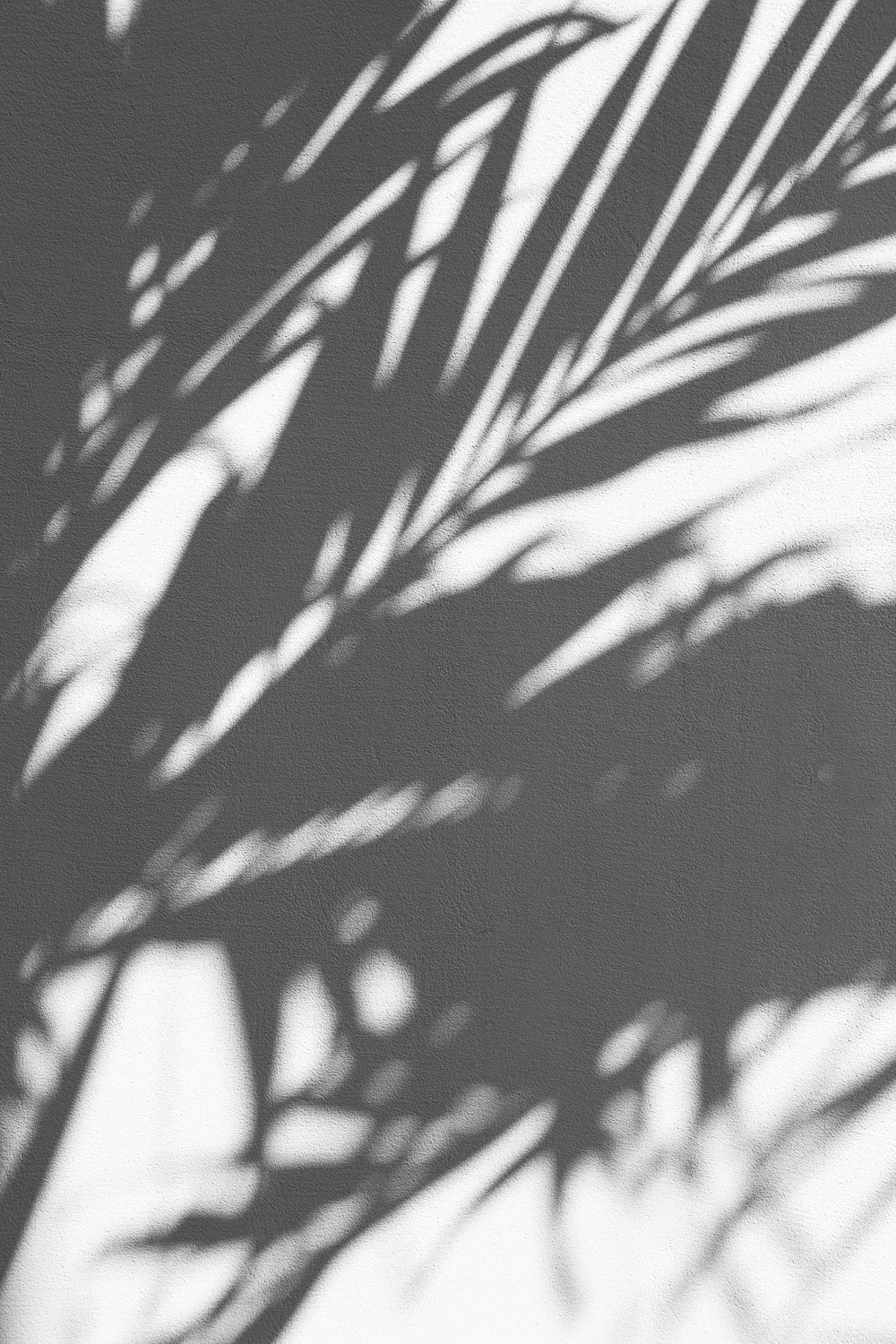 750 Black Aesthetic Pictures Download Free Images On Unsplash