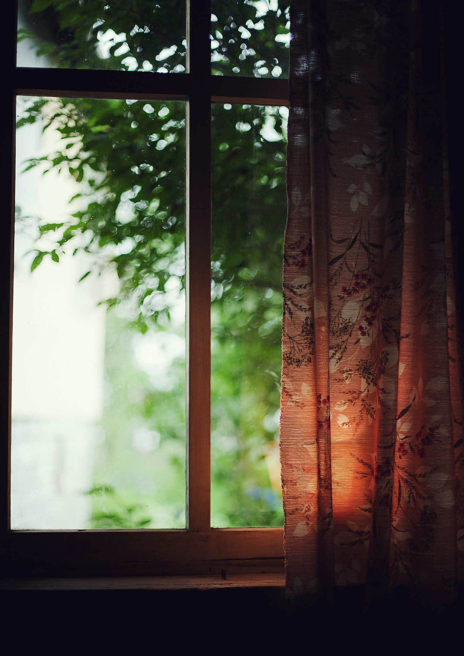 brown and black floral curtains near green leafed trees