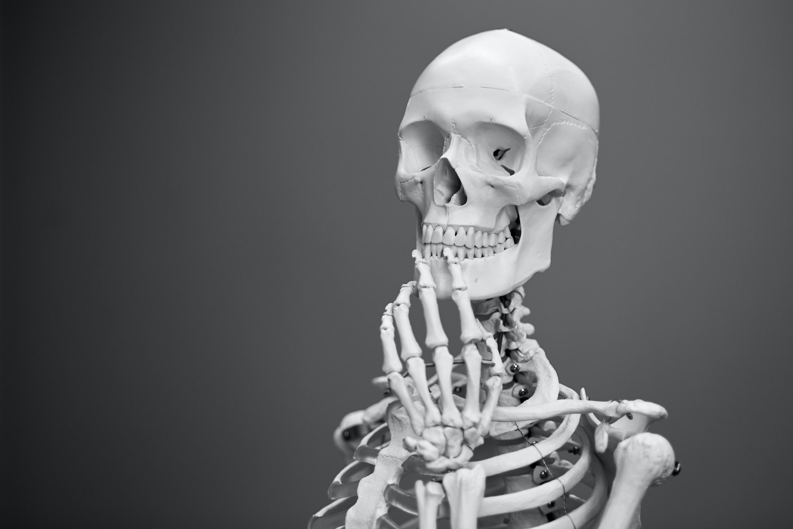 greyscale photography of skeleton