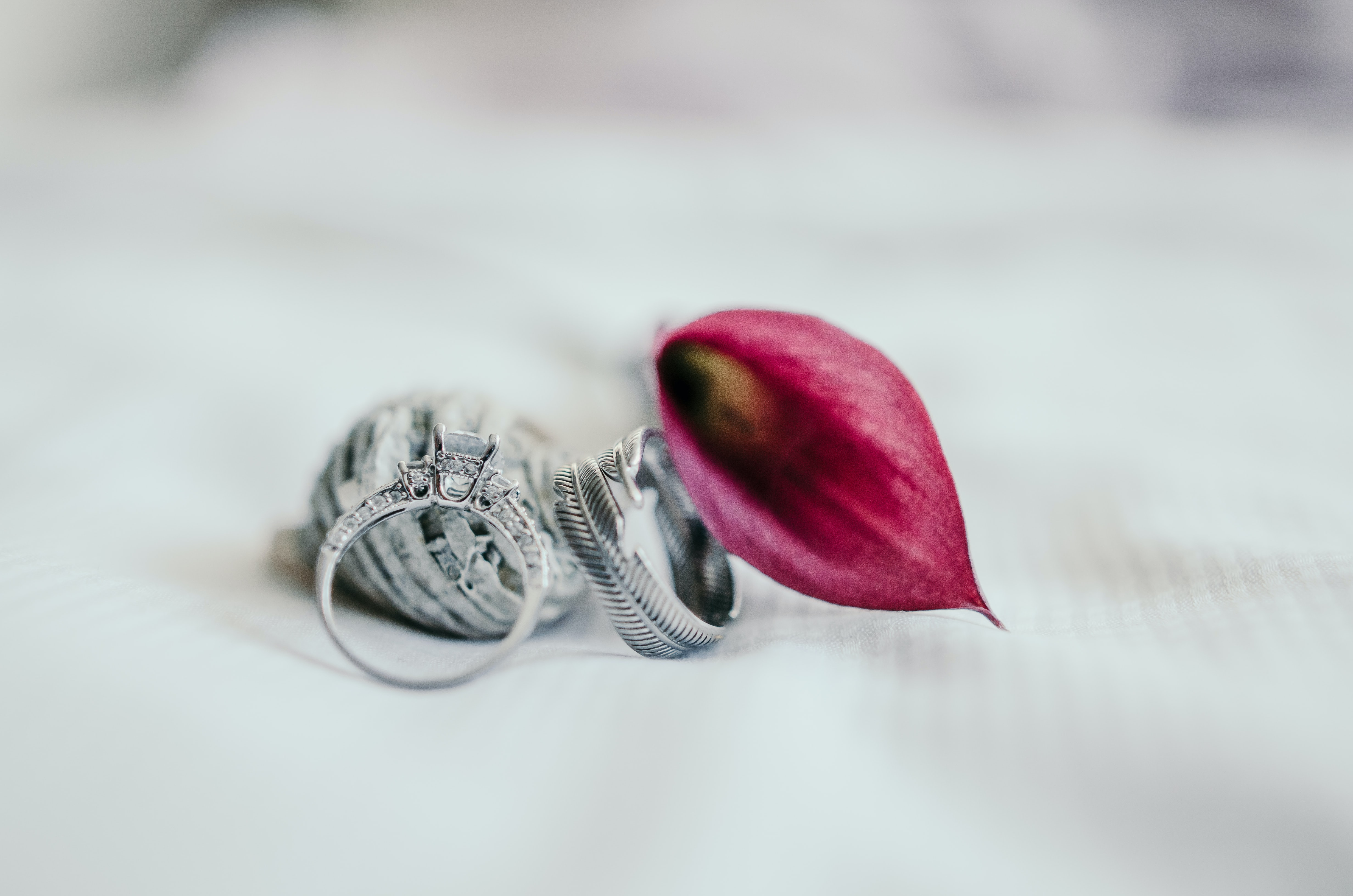 silver-colored ring beside pink flower