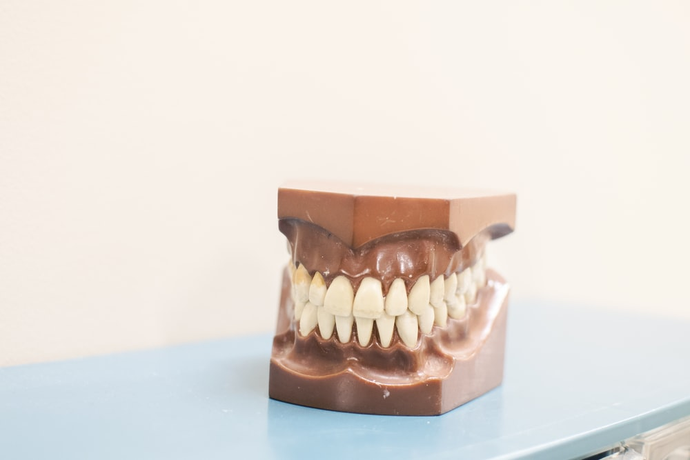 teeth denture on top of blue shelf