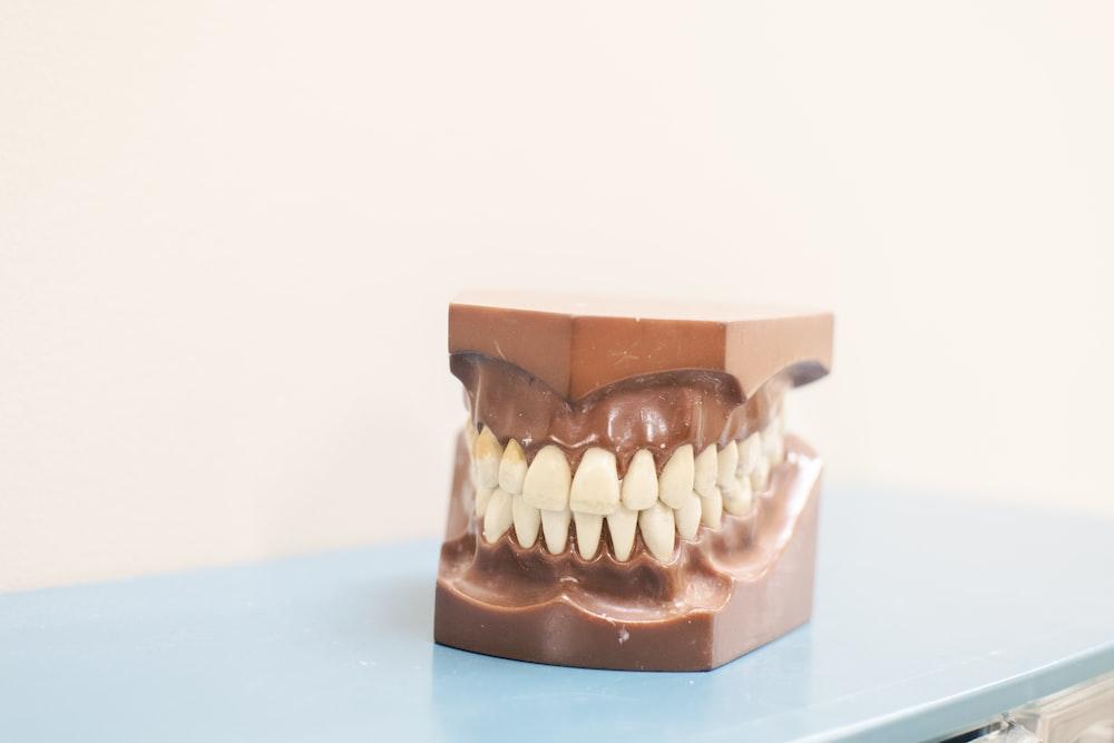 teeth denture on top of blue shelf