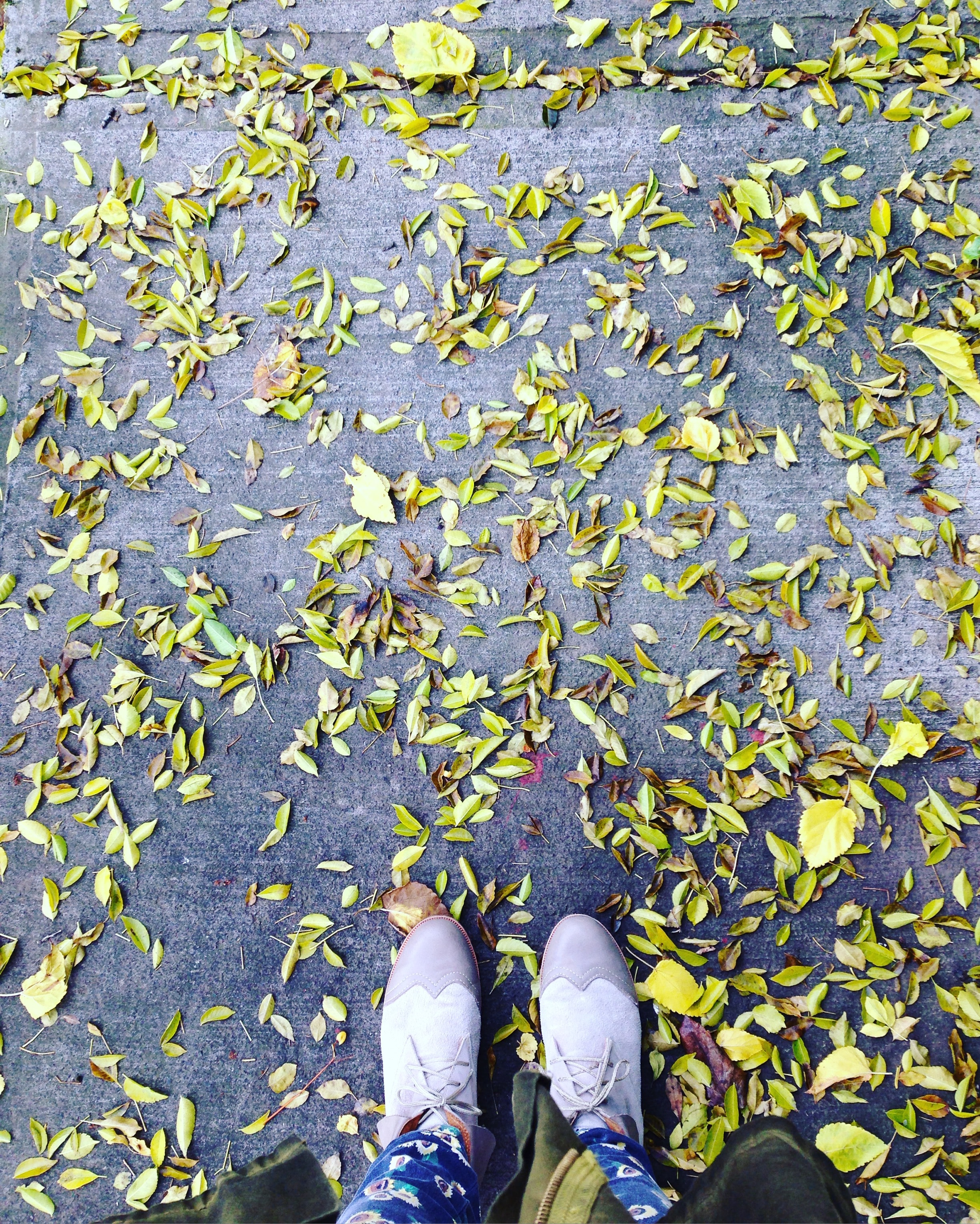 photo of person standing on pile of leaves
