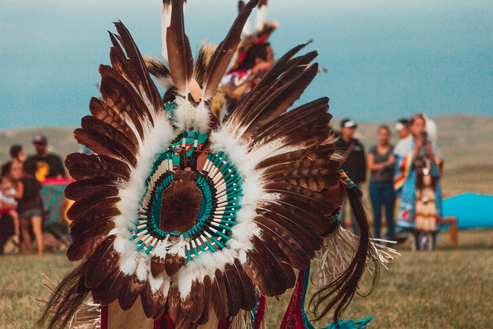 person wearing brown, white, and teal feather costume