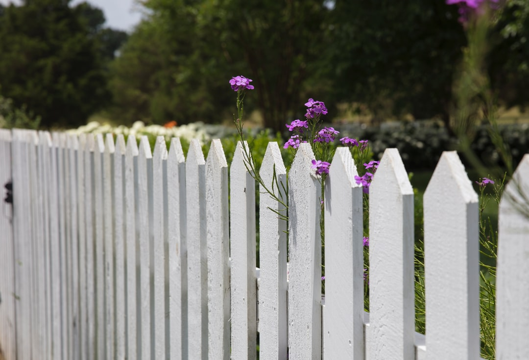 white fence and flowers