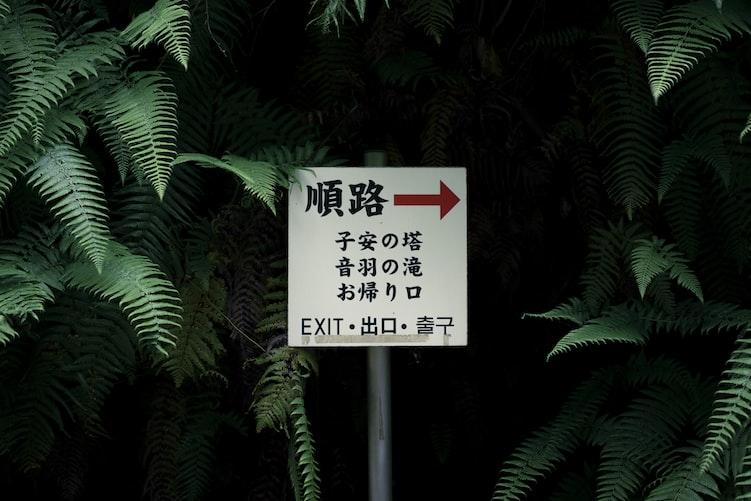 Learn Japanese through Apps