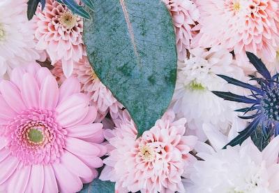 4799. Virágok