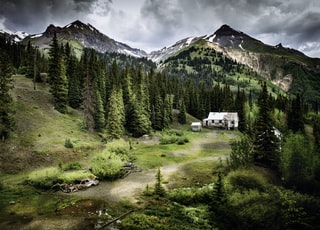 white house surrounded with pine trees near mountain