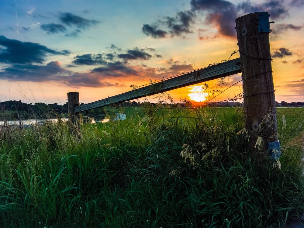 landscape photo of grass field under nimbus clouds during golden hour