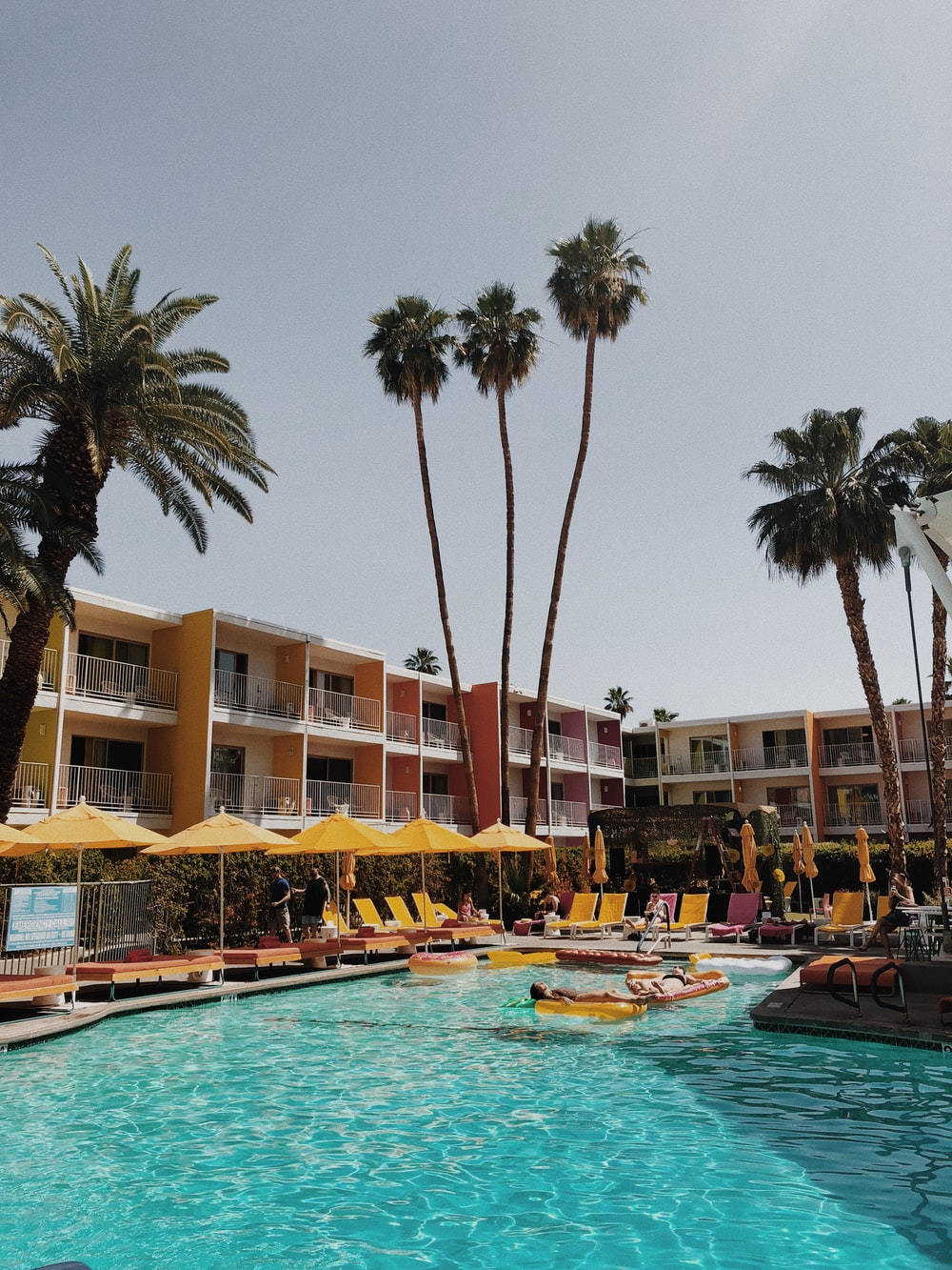 palm trees near pool and building