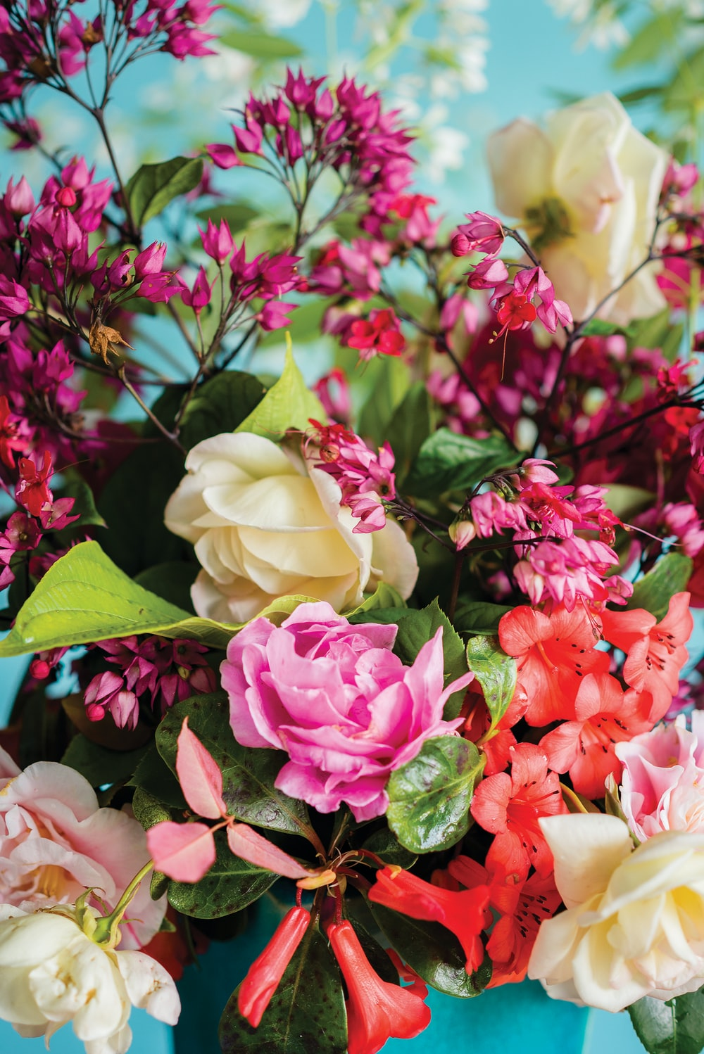 close-up photography of white, pink, and red petaled flower centerpiece