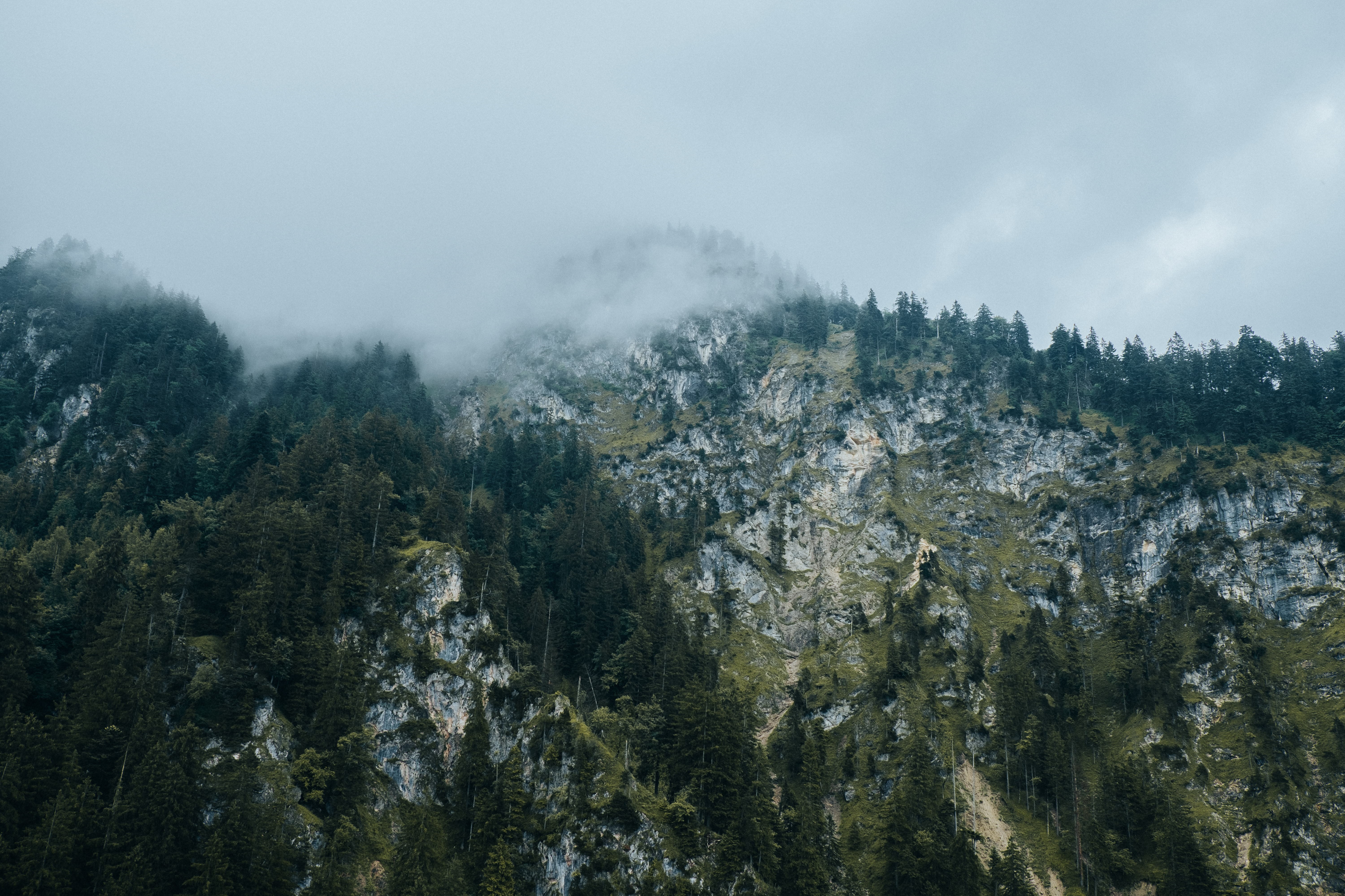 rock mountain with trees under white sky