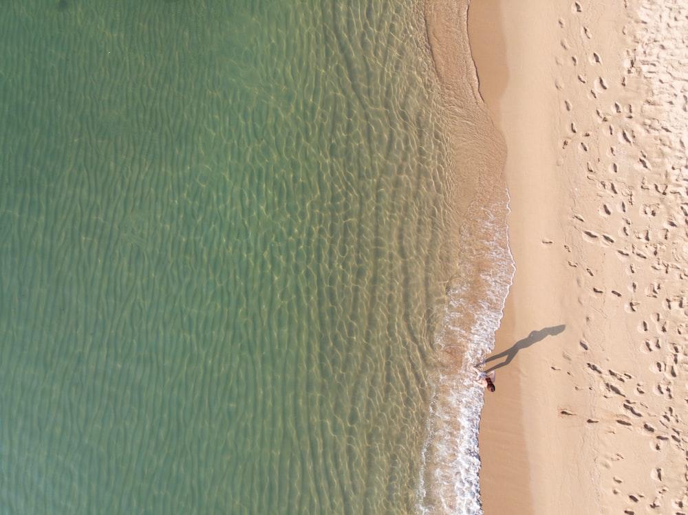 person standing near shoreline