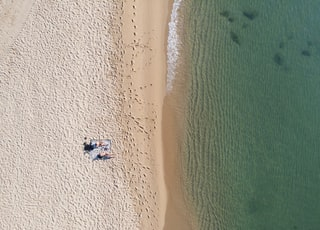 aerial photography of people near seashore at daytime