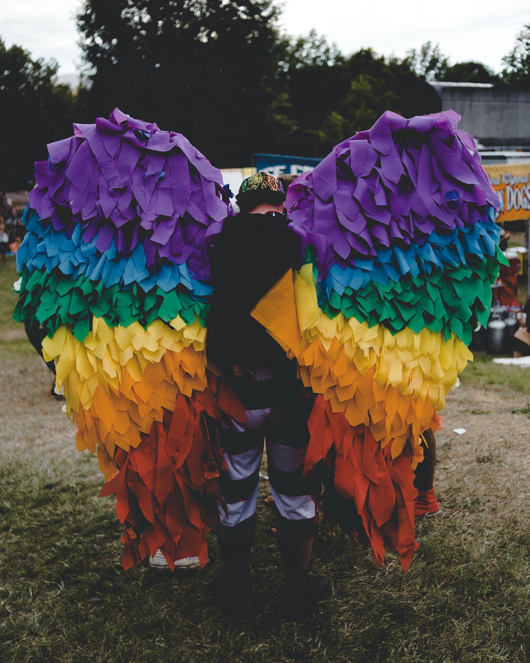 man wearing multicolored wings
