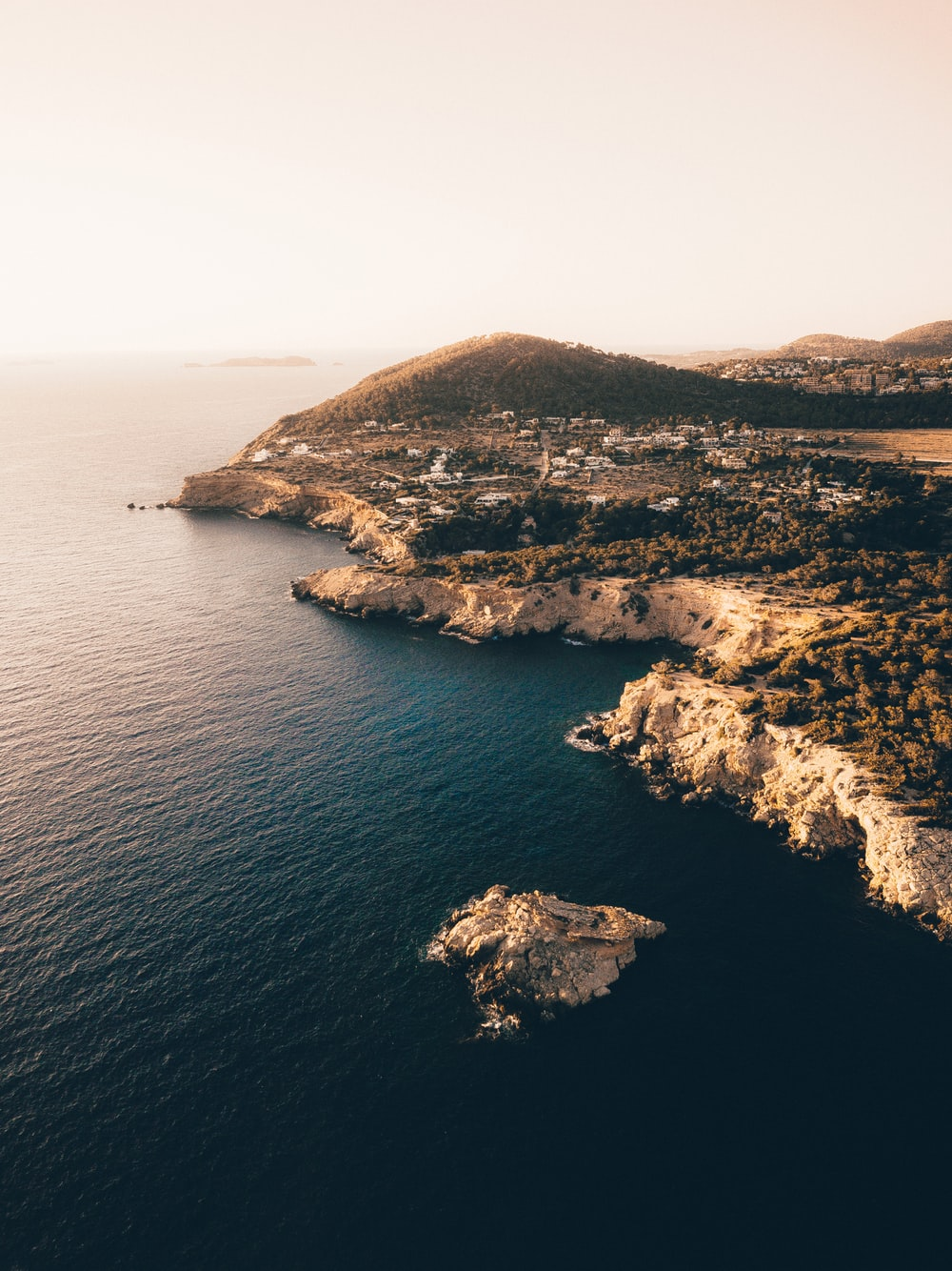 aerial photography of coastline near green trees