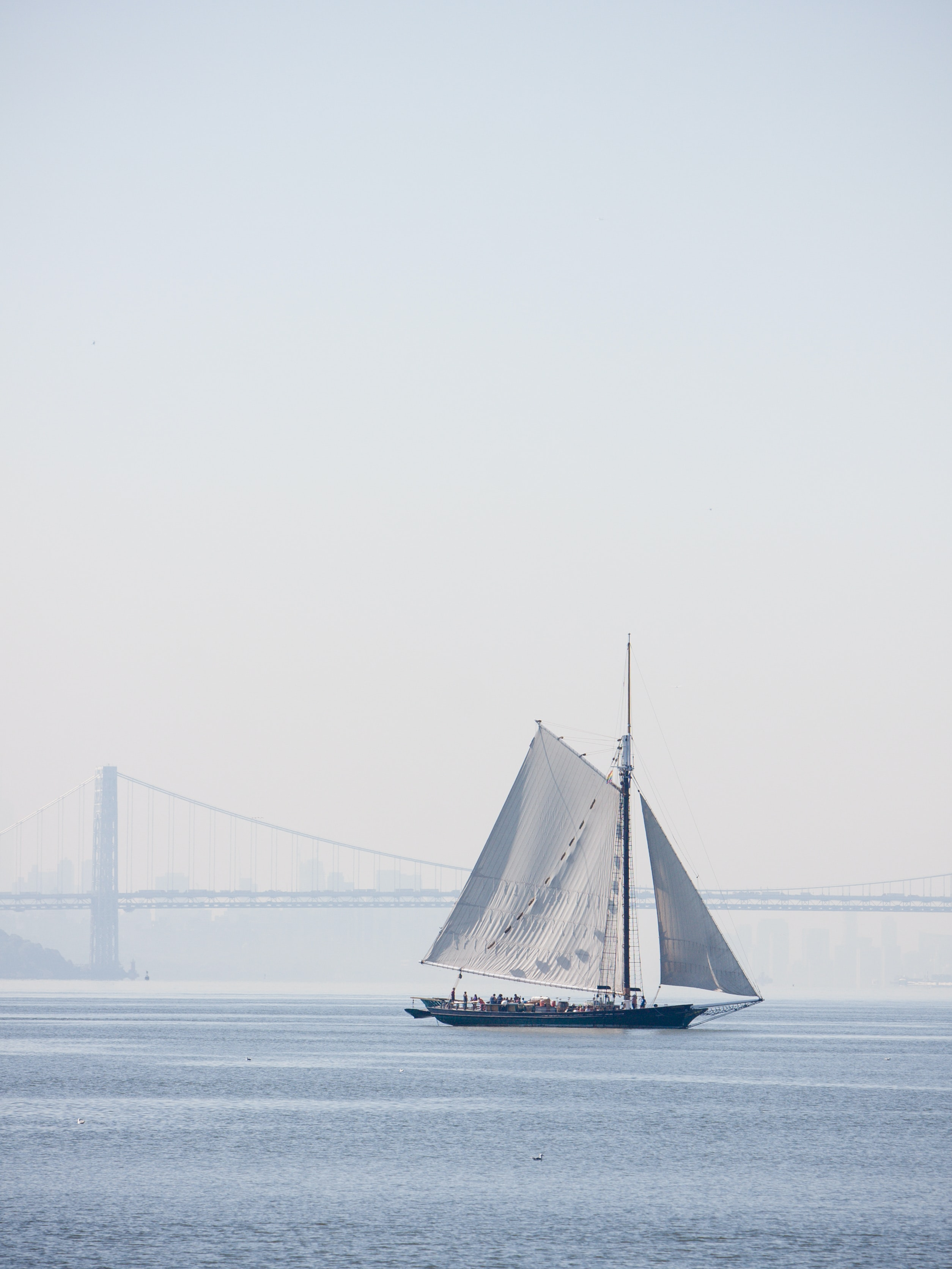 photo of white and black sailboat during daytime