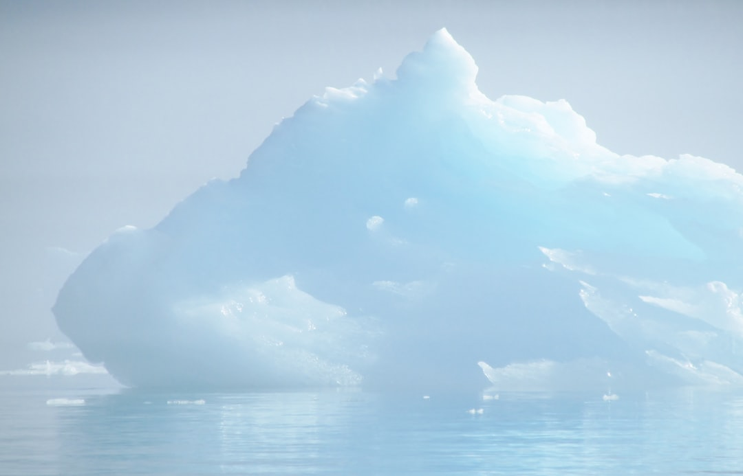 As we wound our way up Le Conte Bay en route to Le Conte Glacier the sun began burning off the fog. Several icebergs, like this one, glowed beautifully depending on their age, the density and translucency of the ice, and other factors.