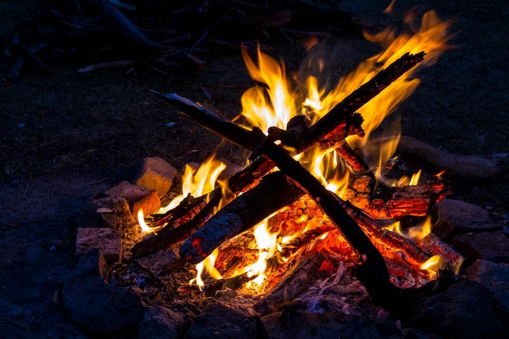 photo of bonfire
