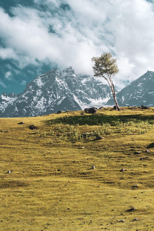 Best Kashmir Pictures Hd Download Free Images On Unsplash