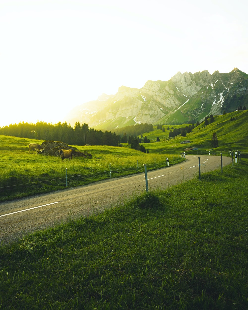 asphalt road between grass field and mountain in the distance during daytime
