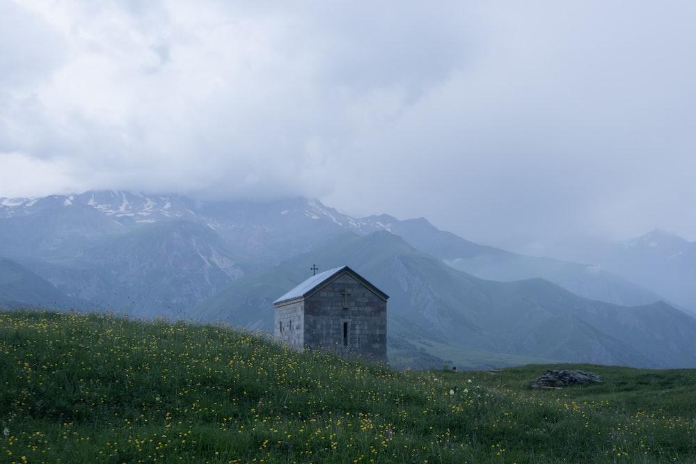 gray house near green grasses