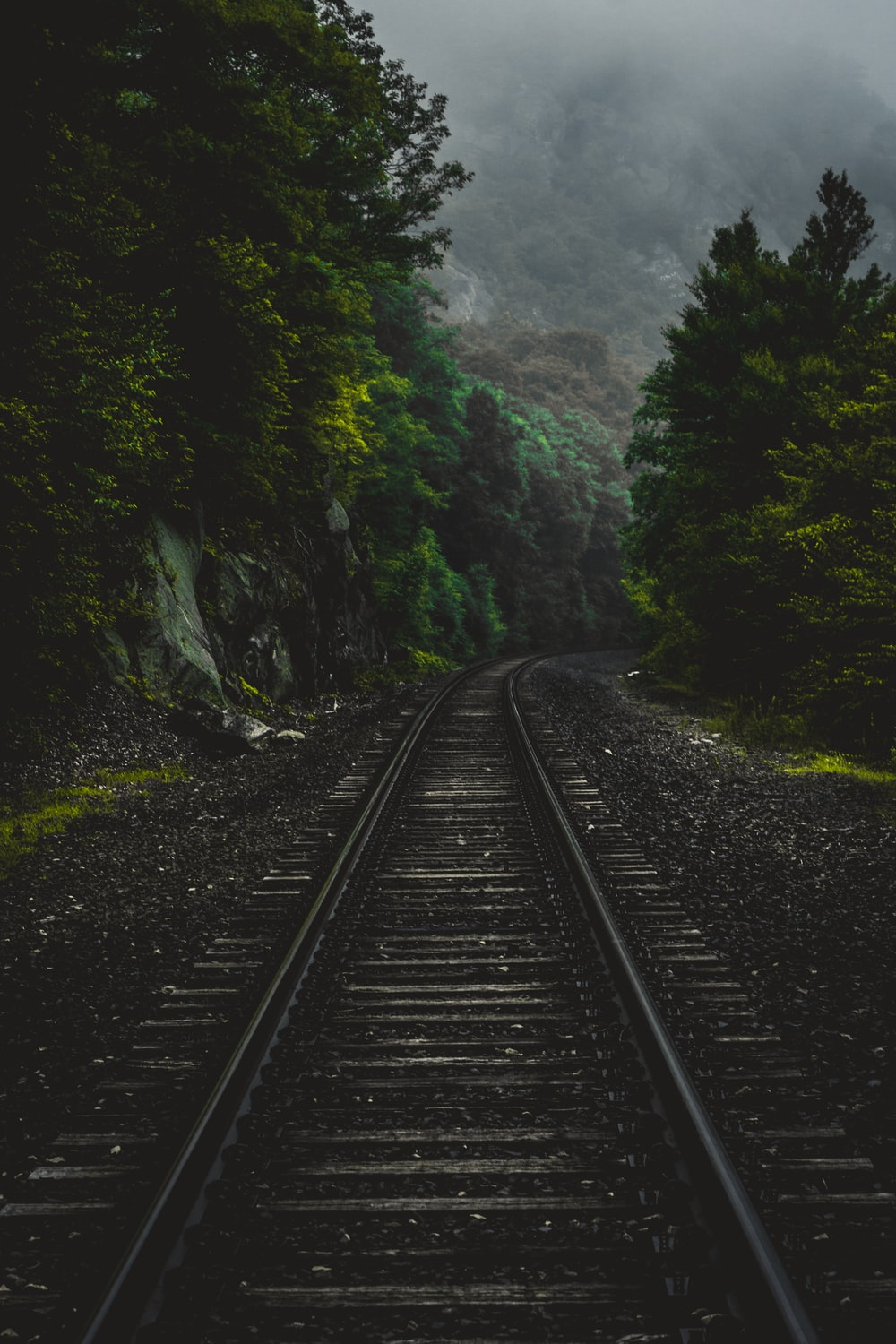 black railway surrounded by trees