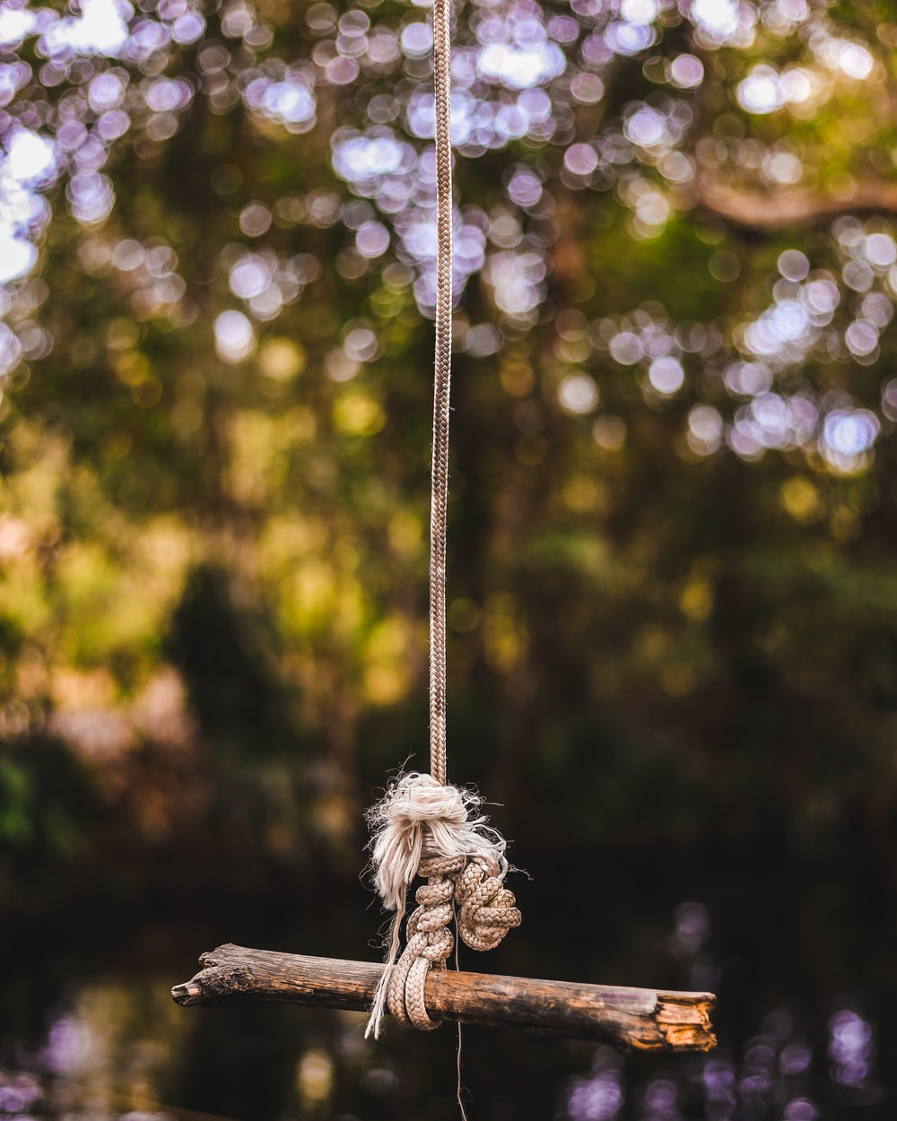 brown stick tied on gray rope