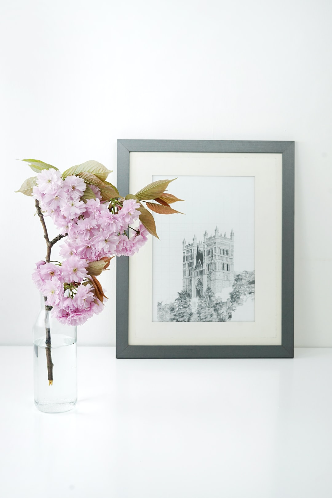 just a quick snap of my flatmate's drawing of a church, next to a pink blossom