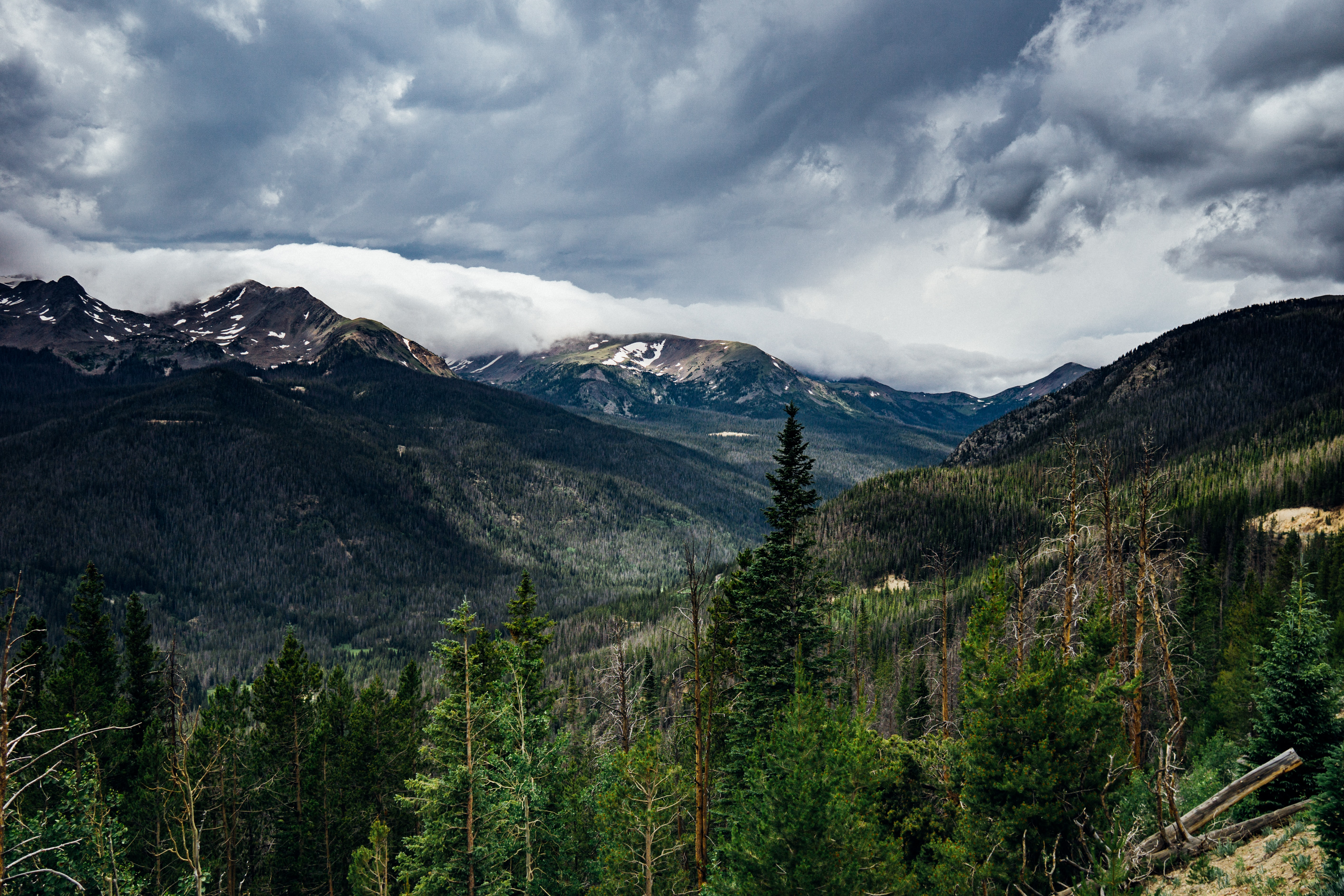 mountain and green tress under cloudy sky
