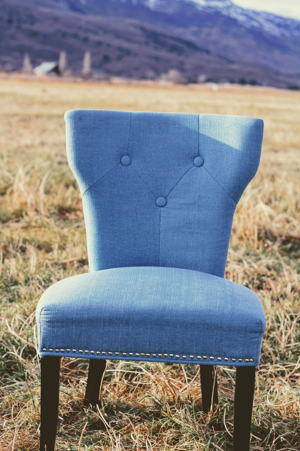 tufted blue padded armless chair on field during daytime