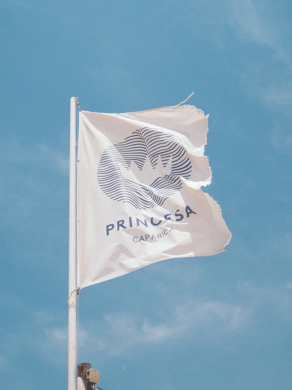 white and blue Princesa Caparica banner