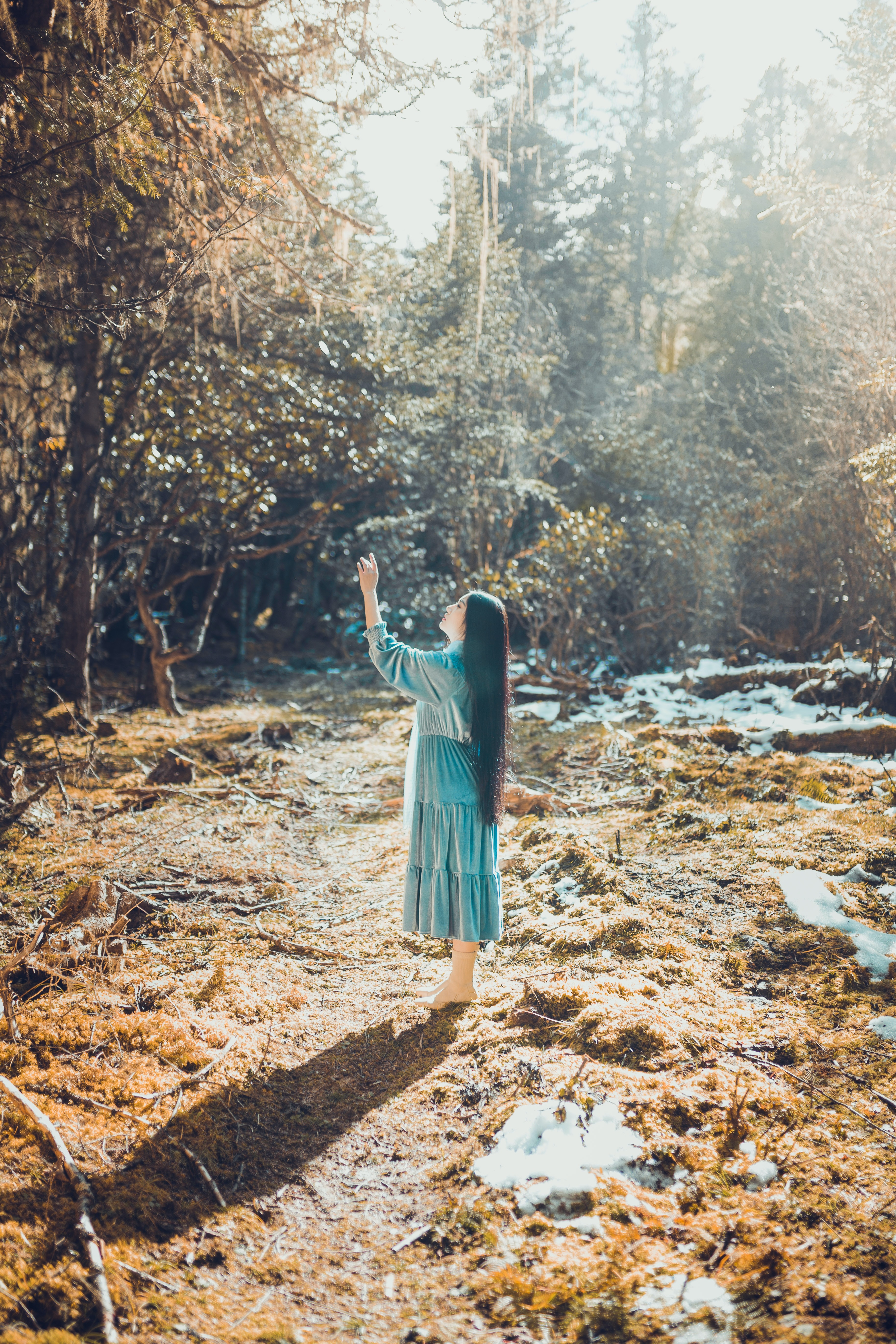 woman standing reaching the tree at daytime