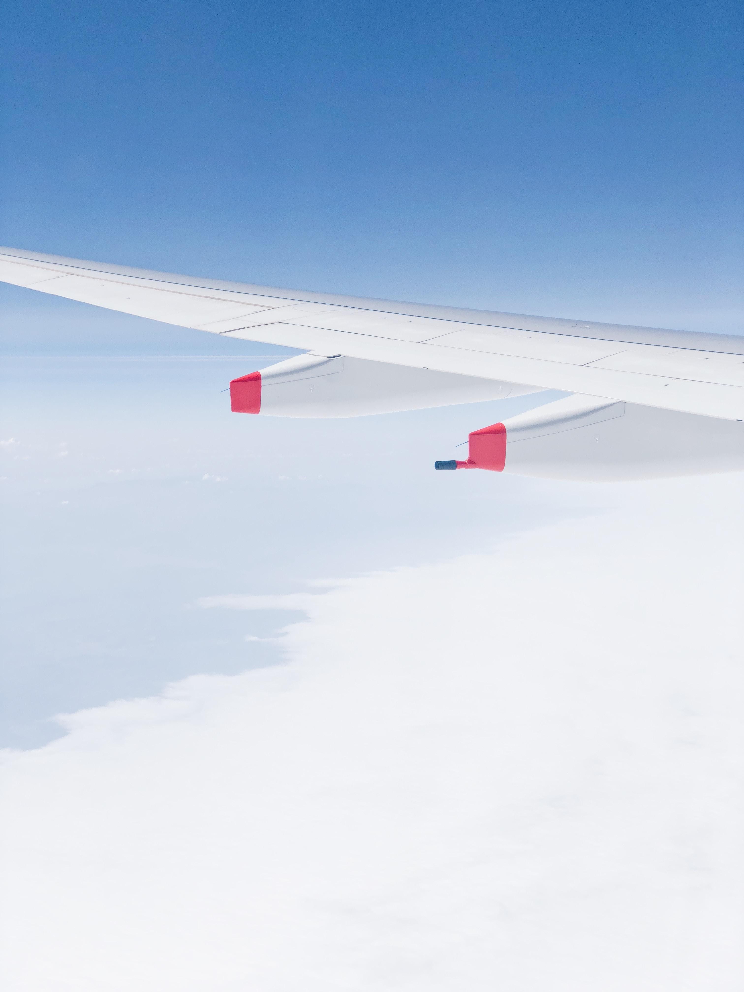 white airline