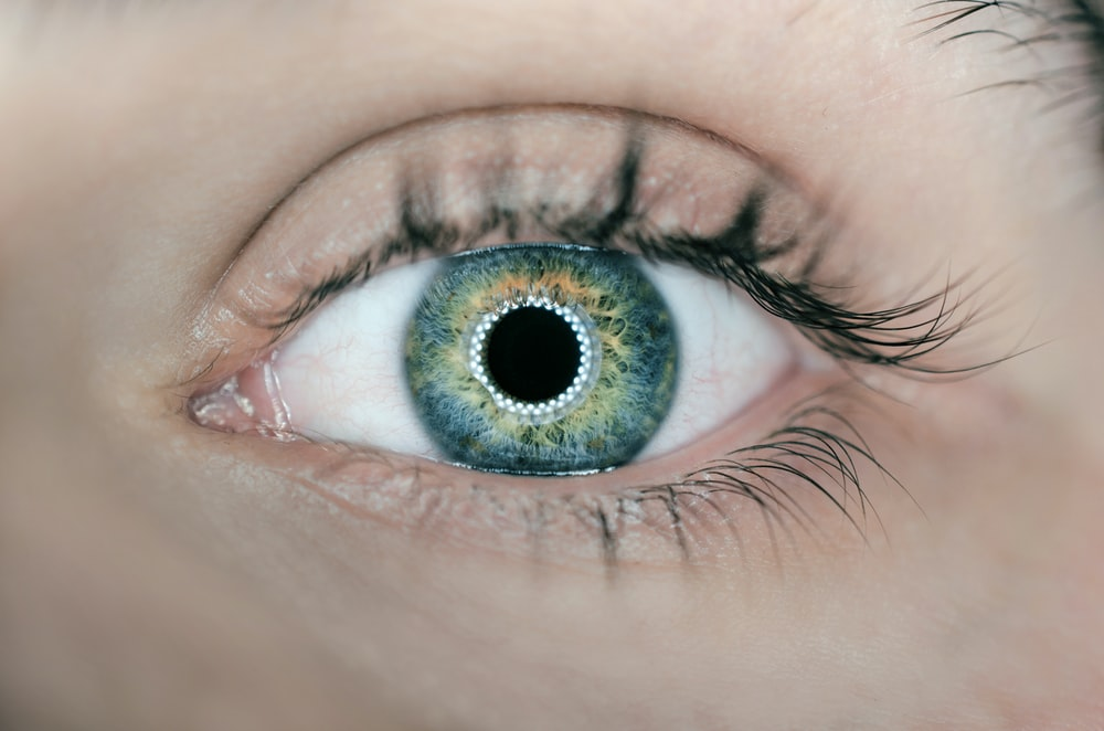 person showing green and black eyelid closeup photography
