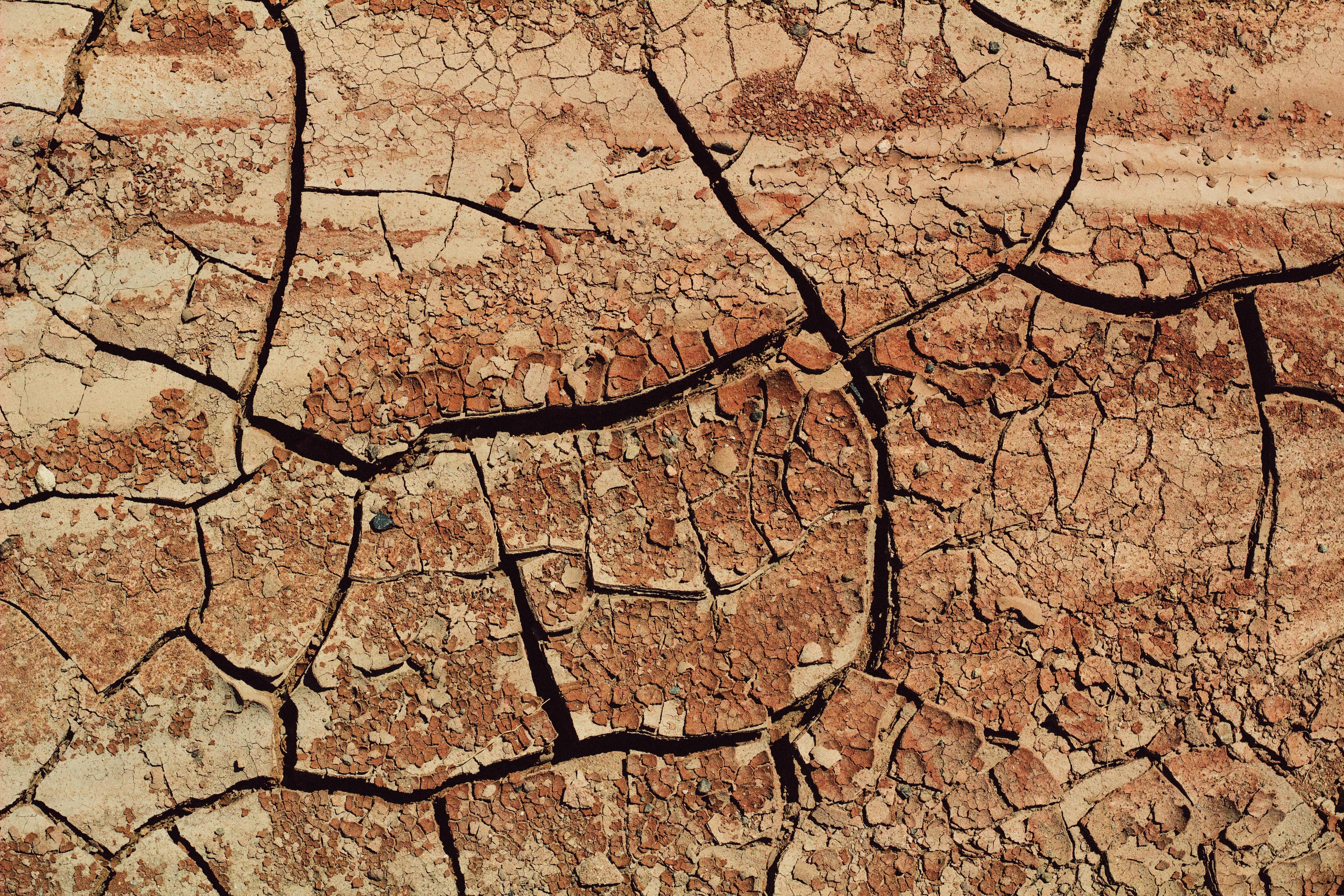 bird's eye view photo of soil
