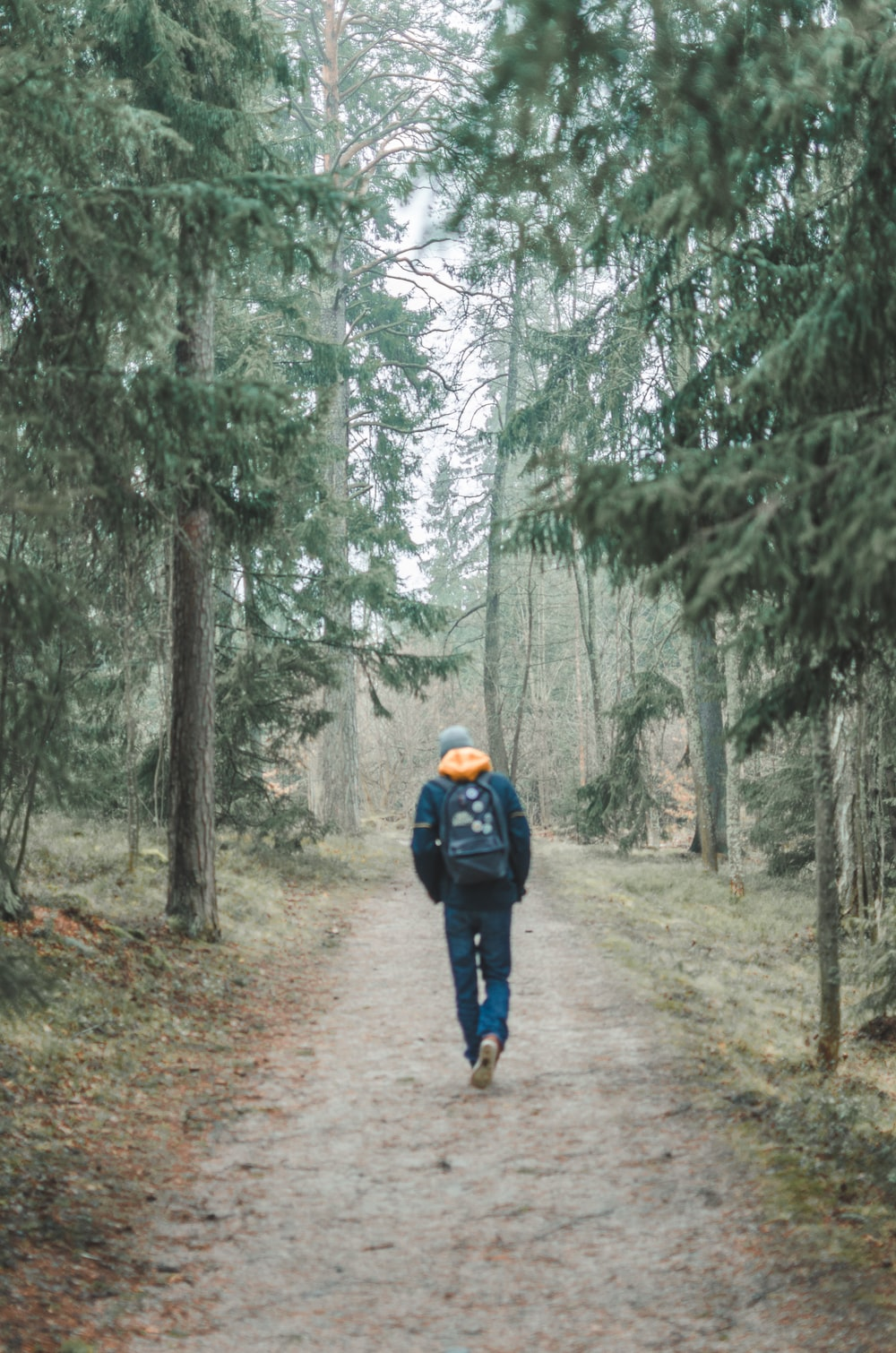 man waking narrow pathway near trees at daytime