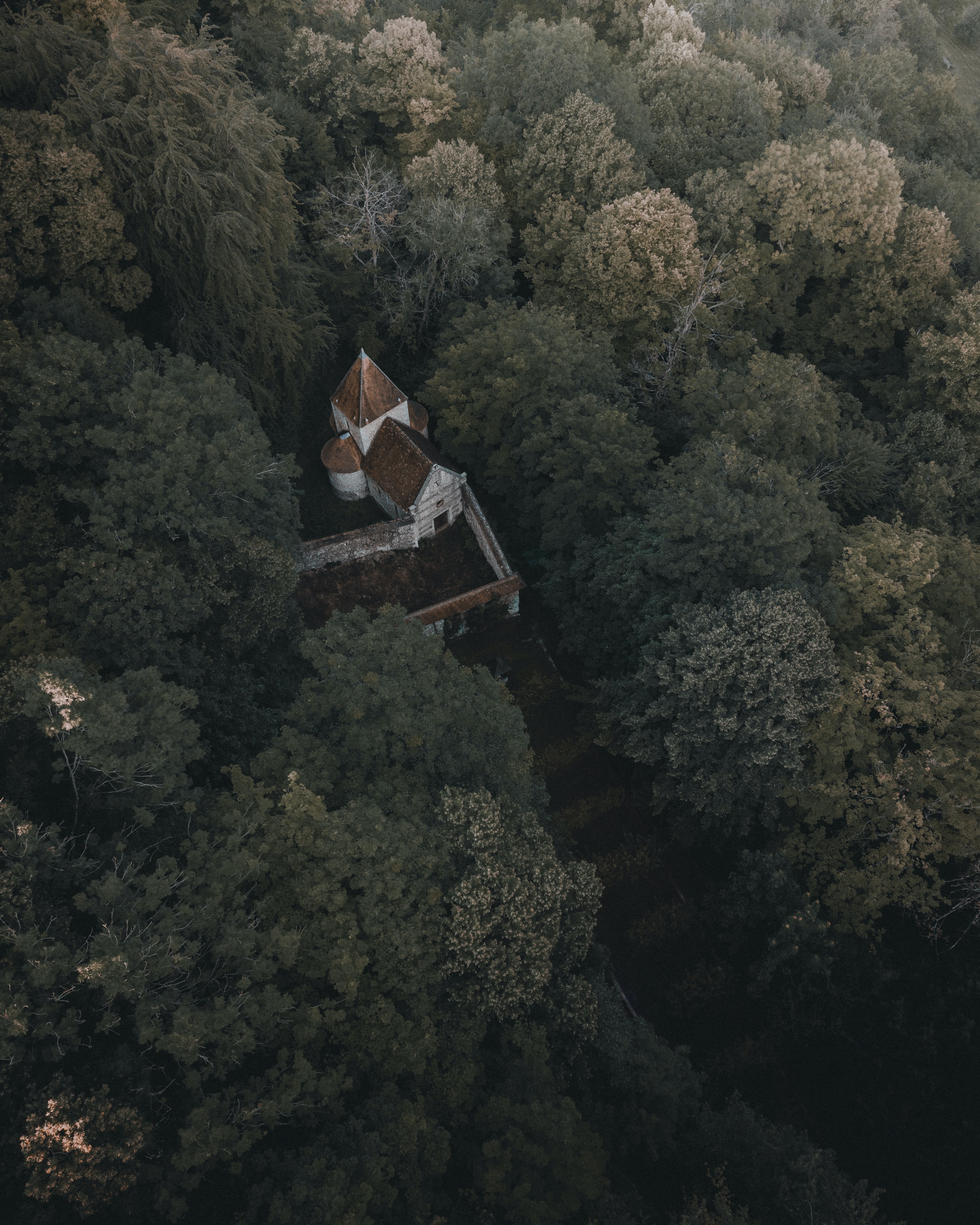 gray and white house surrounded by trees