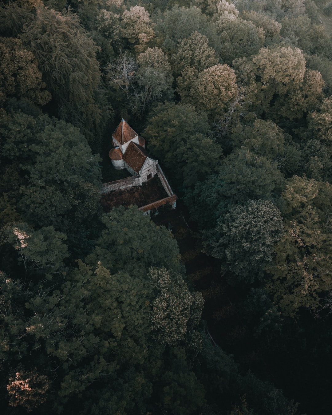 While flying my drone, saw this little church in the middle of the forest.