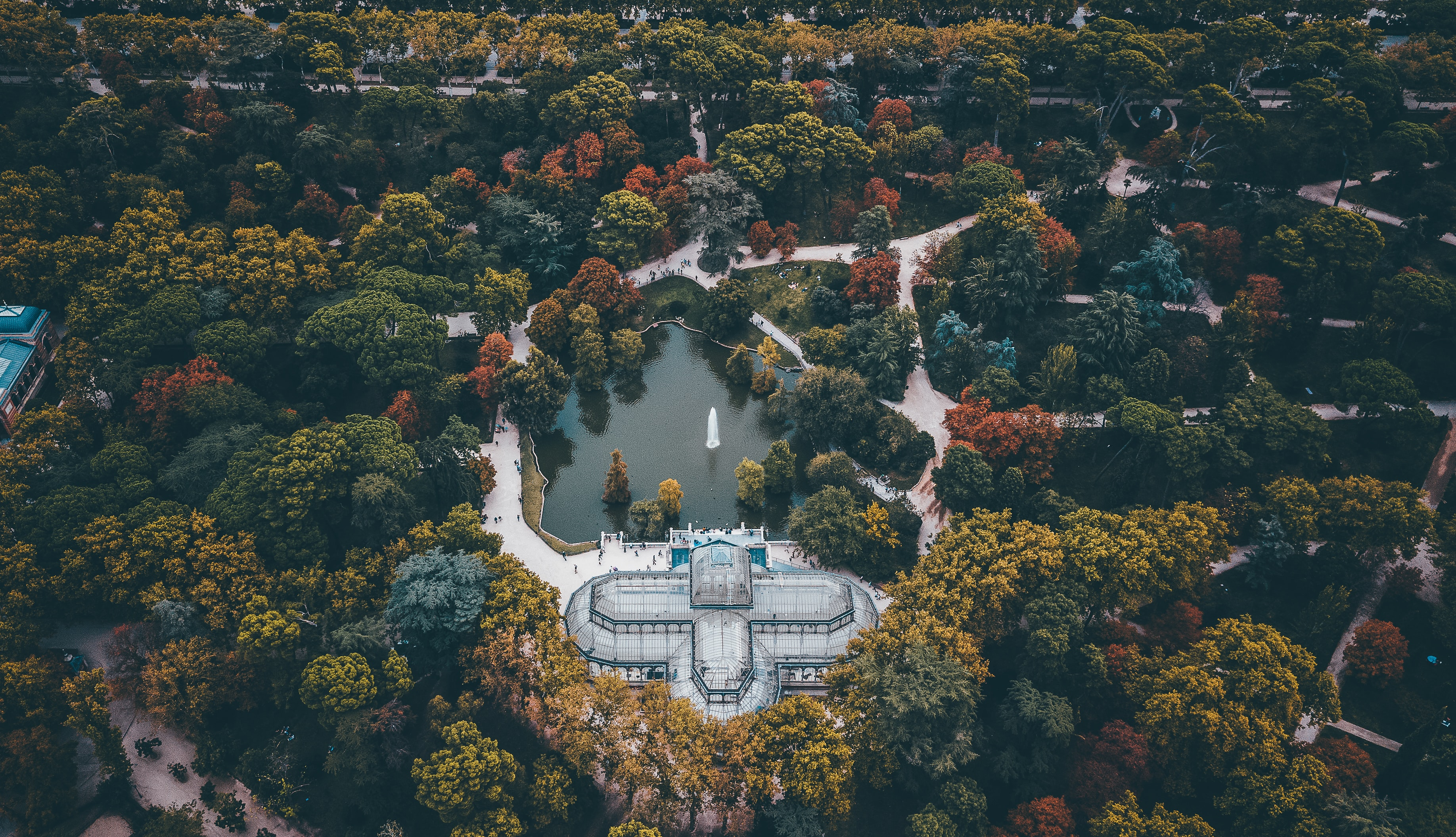 aerial view of white building surround trees