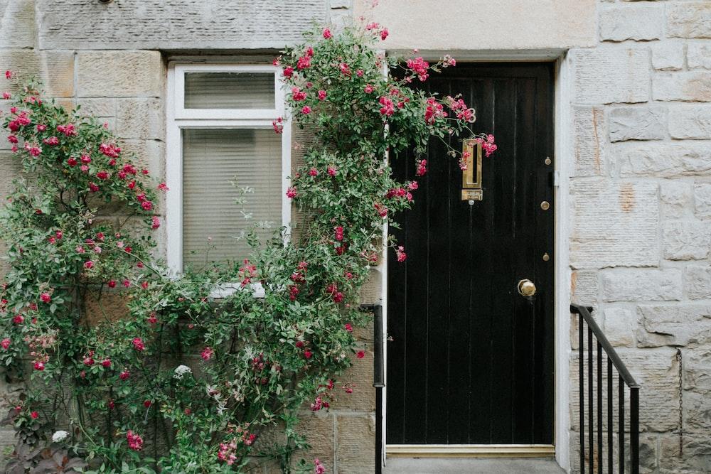 100 Front Door Pictures Download Free Images On Unsplash