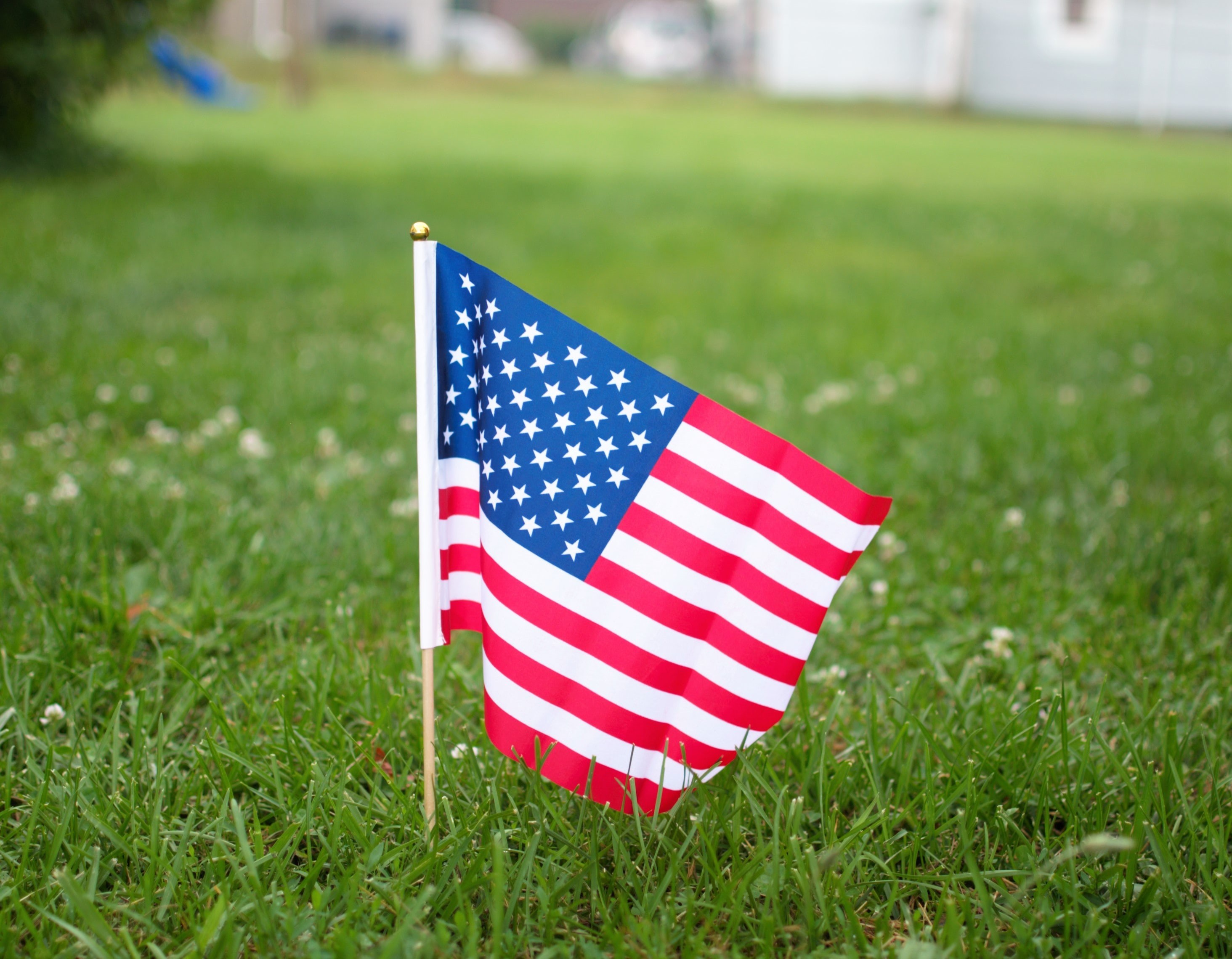 USA flag on green grass