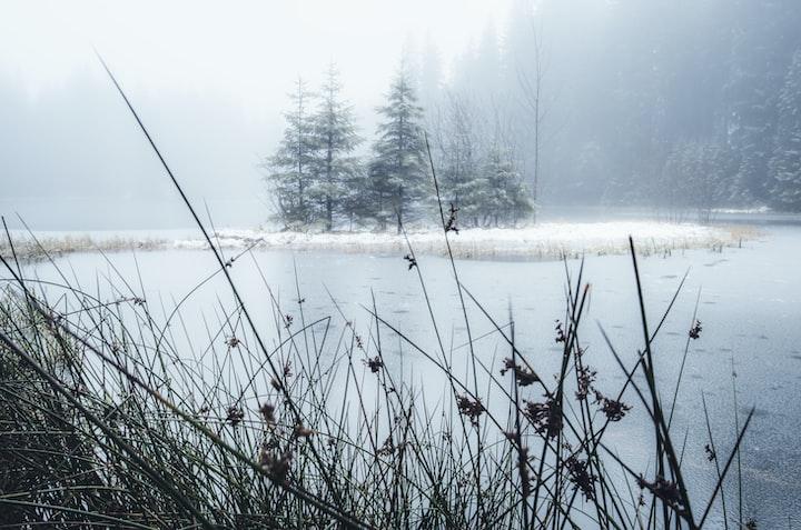 The ice pond near my home