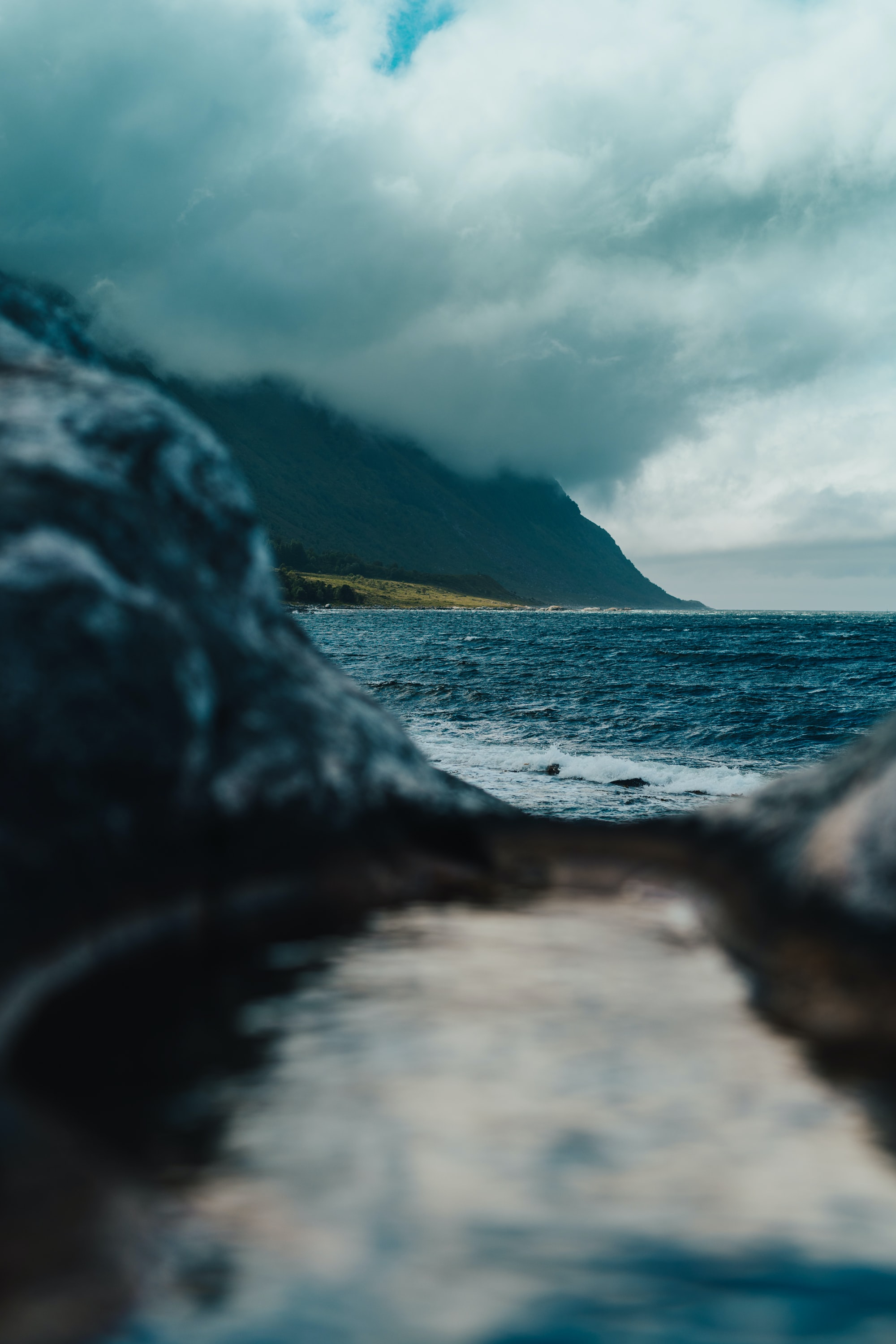 selective focus photography of body of water