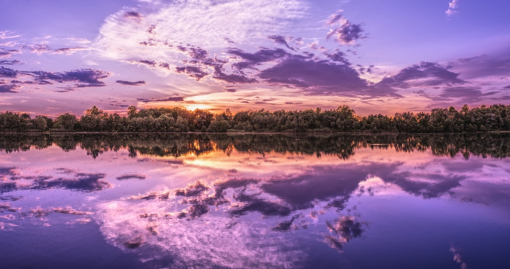 reflection of clouds and trees on body of water