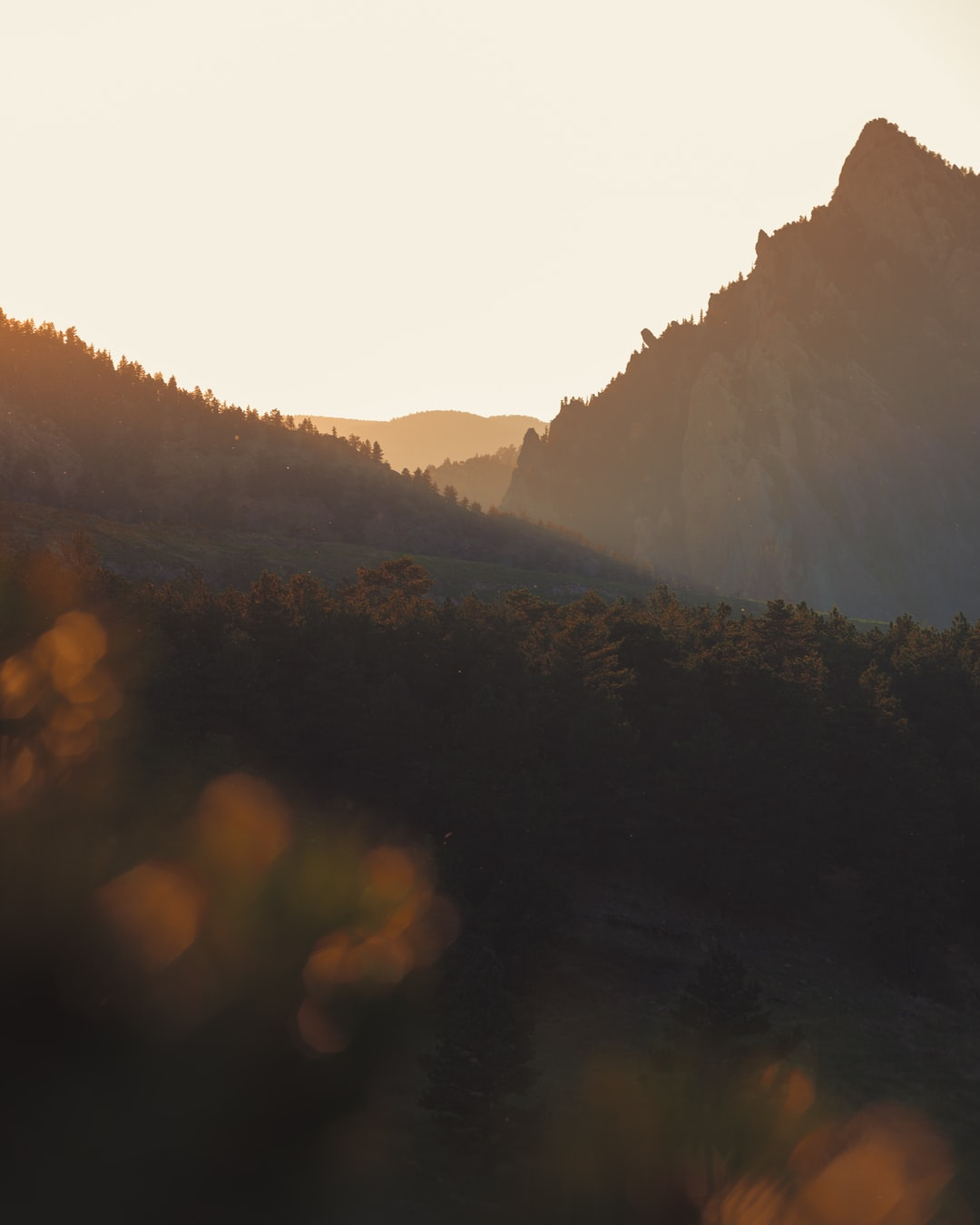 This photo was taken in Boulder, Colorado along the Flat Iron Vista Trail.